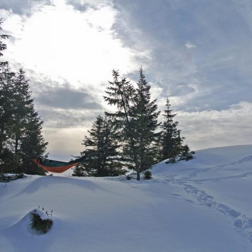 Hamac iarna
